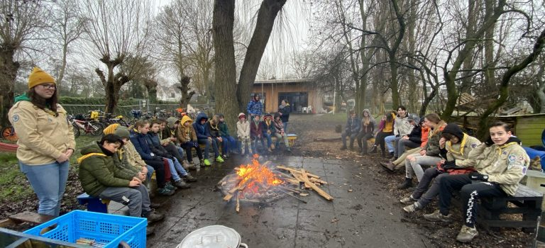 Marshmallows scouts